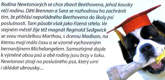 Beethoven 4